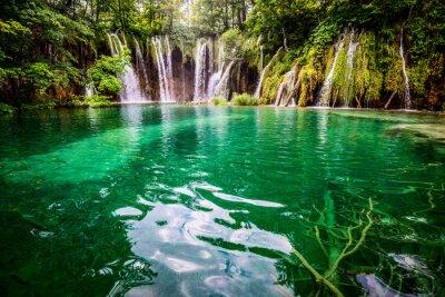 Canvastavlor Plitvicka jezera nationalpark Kroatien