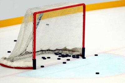 Canvastavlor Porta hockey  con dischi