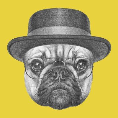 Canvastavlor Porträtt av fransk bulldogg med hatt och glasögon. Handritad illustration.