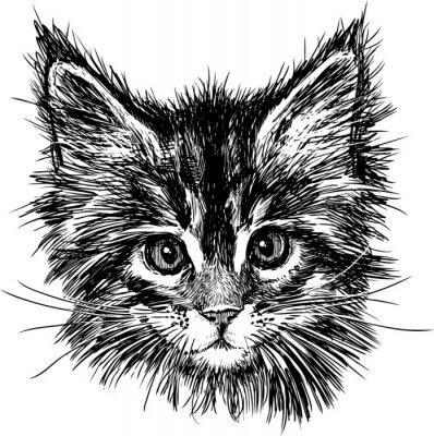 Canvastavlor porträtt av katt