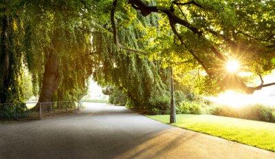 Canvastavlor Promenaden i en vacker stadspark