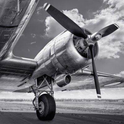 Canvastavlor propeller av ett flygplan