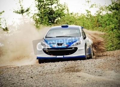 Canvastavlor Rallybil i aktion