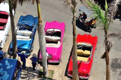 Canvastavlor Retro bilar i Havanna.