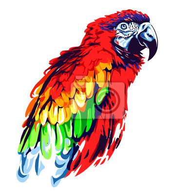 Canvastavlor röd papegoja