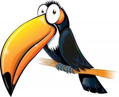 Canvastavlor roligt toucan tecknad isolerade på vitt.