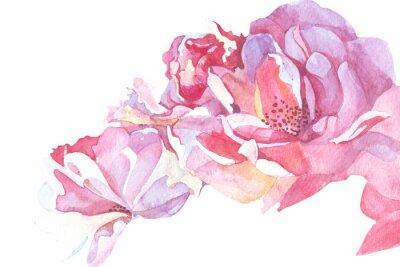 Canvastavlor rosa bakgrund akvarellillustration