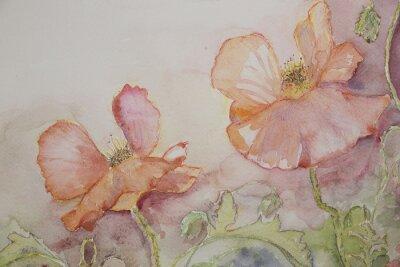 Canvastavlor Rosa och orange vallmo.
