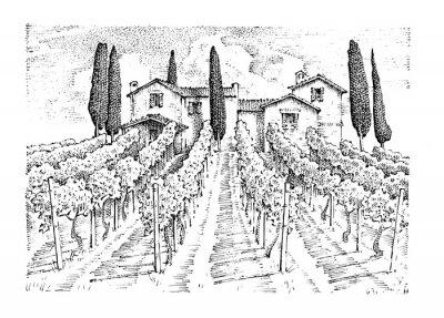 Canvastavlor Rustik vingård. lantligt landskap med hus. sol toscany bakgrund. fält och cypresser. skörd och höstackar. graverad hand ritad i gammal skiss och vintage stil för etikett.