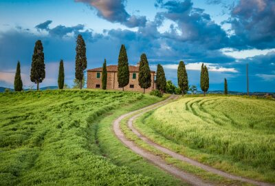 Canvastavlor Scenic view of typical Tuscany landscape, Italy