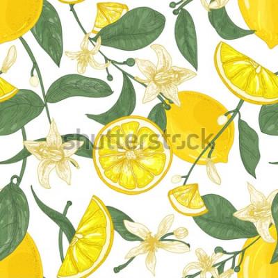 Canvastavlor Seamless mönster med färska saftiga citroner, hela och skär i bitar, blommor och blad på vit bakgrund. Bakgrund med citrusfrukter. Botanisk vektorillustration i antik stil för tapeter.