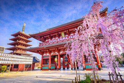 Canvastavlor Sensoji-templet i Asakusa, Tokyo, Japan