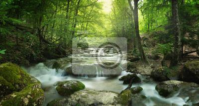 Canvastavlor skog vattenfall