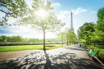 Canvastavlor solig morgon och Eiffeltornet, Paris, Frankrike