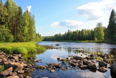 Canvastavlor sommar flod