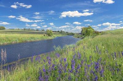 Canvastavlor Sommarlandskap med floden
