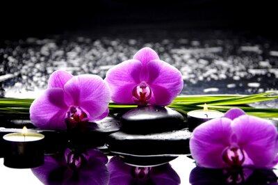 Canvastavlor Spa stilleben med uppsättning av rosa orkidé och stenar reflektion