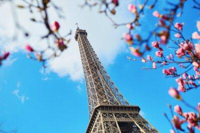 Canvastavlor Spring i Paris