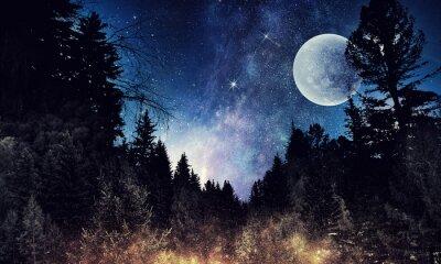 Canvastavlor Starry sky och moon. Mixad media