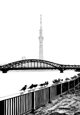 Canvastavlor Sumida bridge