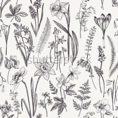 Canvastavlor Tappning sömlös blommönster. Vårblommor och örter. Botanisk illustration. Narcissus, Lily of the Valley, Hellebore, Snowdrop, Crocus. Gravyr. Svartvitt.