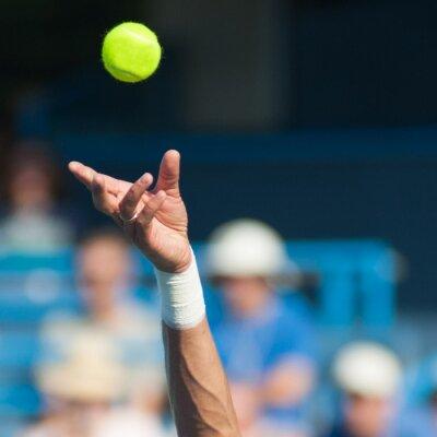 Canvastavlor tennis Serve