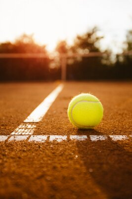 Canvastavlor Tennisboll tjänst låda inuti