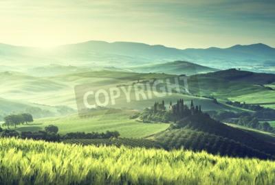 Canvastavlor Tidig vårmorgon i Toscana, Italien