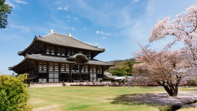 Canvastavlor Todaiji Temple i sakura säsong på Nara, Japan
