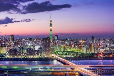 Canvastavlor Tokyo, Japan Skyline