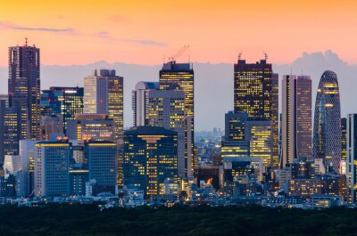 Canvastavlor  Tokyo Skyline at Twilight