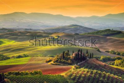 Canvastavlor Toscana landskap vid soluppgången. Typisk för regionen toskanska bondgården, kullar, vingård. Italien