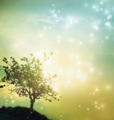 Canvastavlor Träd silhuett vid skymning