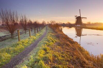 Canvastavlor Traditionell holländsk väderkvarn i Nederländerna vid soluppgången