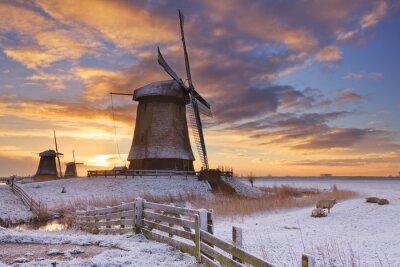 Canvastavlor Traditionella holländska väderkvarnar i vintern på soluppgången