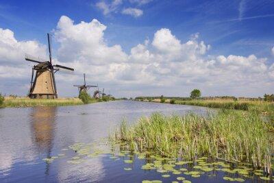 Canvastavlor Traditionella holländska väderkvarnar på en solig dag på Kinderdijk