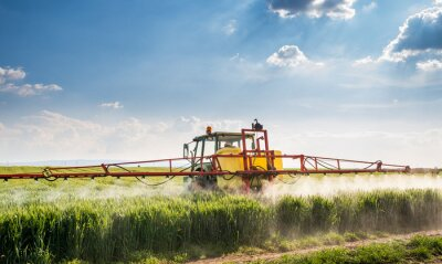 Canvastavlor Traktor besprutning vetefält