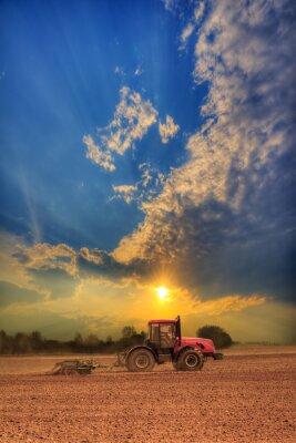 Canvastavlor Traktor på fältet