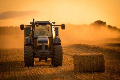 Canvastavlor Traktor solnedgång skörd