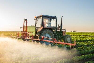 Canvastavlor Traktor sprutning sojaböna