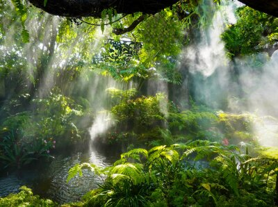 Canvastavlor Tropical jungle with river and sun  beam  and foggy in the garden