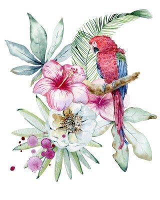 Canvastavlor Tropical watercolor illustration