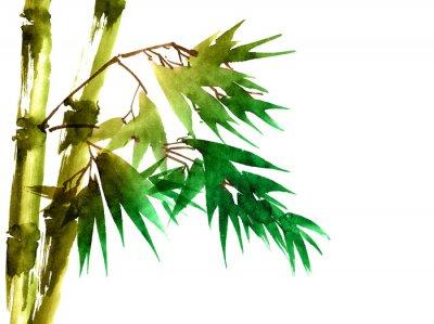 Canvastavlor Tropisk bambu med blad