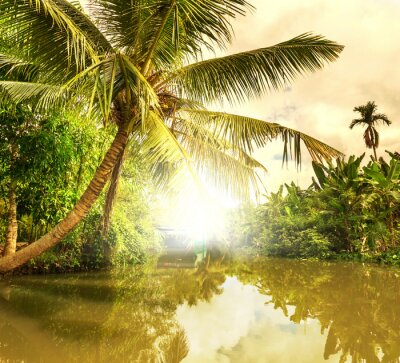 Canvastavlor tropisk flod