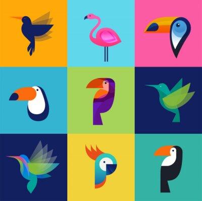 Canvastavlor Tropiska fåglar - uppsättning vektor ikoner