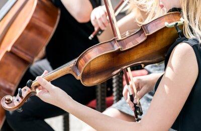 Canvastavlor ung kvinna som spelar fiol