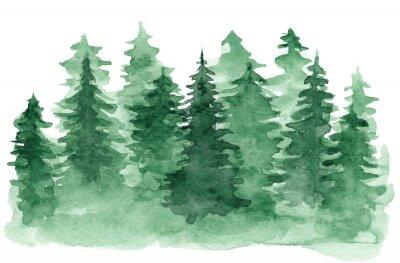 Canvastavlor Vacker akvarellbakgrund med grön barrskog. Mystisk gran- eller tallträdillustration för vinterjuldesign som isoleras på vit bakgrund