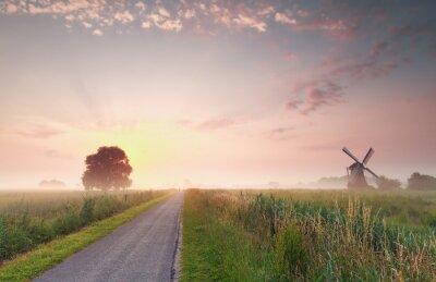 Canvastavlor vacker soluppgång sommar på holländska jordbruksmark