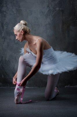 Canvastavlor Vackra balettdansös
