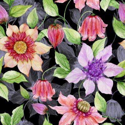 Canvastavlor Vackra clematis blommor på klättring kvistar mot svart bakgrund. Seamless blommönster. Akvarellmålning. Handmålade illustrationen.